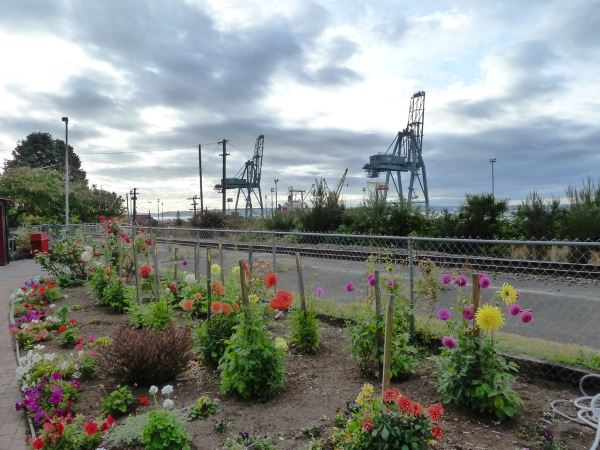 Depot Park & the Port of Everett